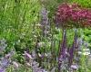 Tuin | Kwekerij In Goede Aarde (foto: Truus Klok)