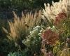 Tuin | Kwekerij In Goede Aarde